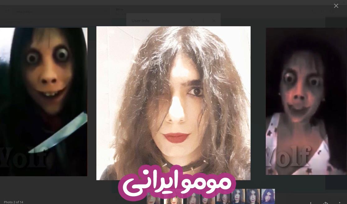 محمدرضا حقیری: با مومو ایرانی آشنا شوید